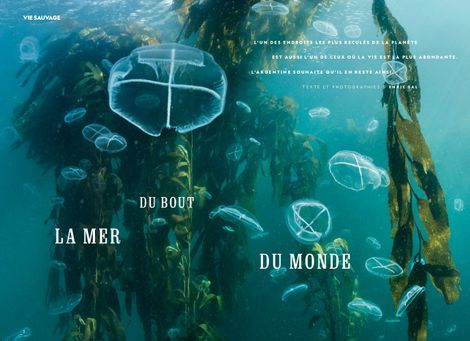 La mer du bout du monde
