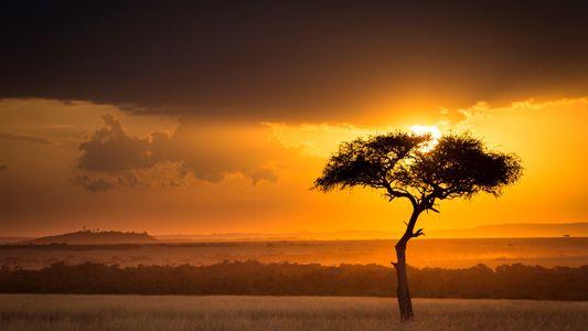 10 romans pour (re)découvrir l'Afrique