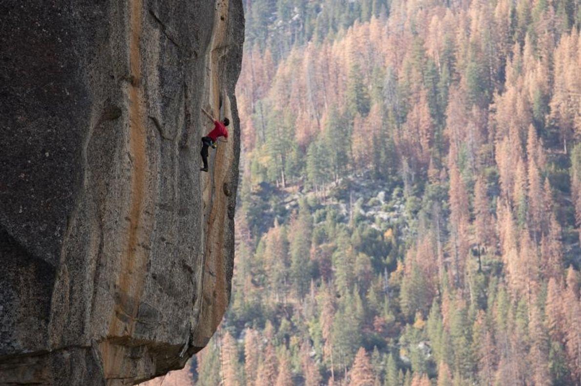 Alex Honnold gravissant en solo intégral le Rostrum, une voie de Yosemite célèbre pour ses longues ...