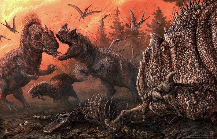 Dans cette illustration, des allosaures se battent pour les restes d'autres dinosaures.
