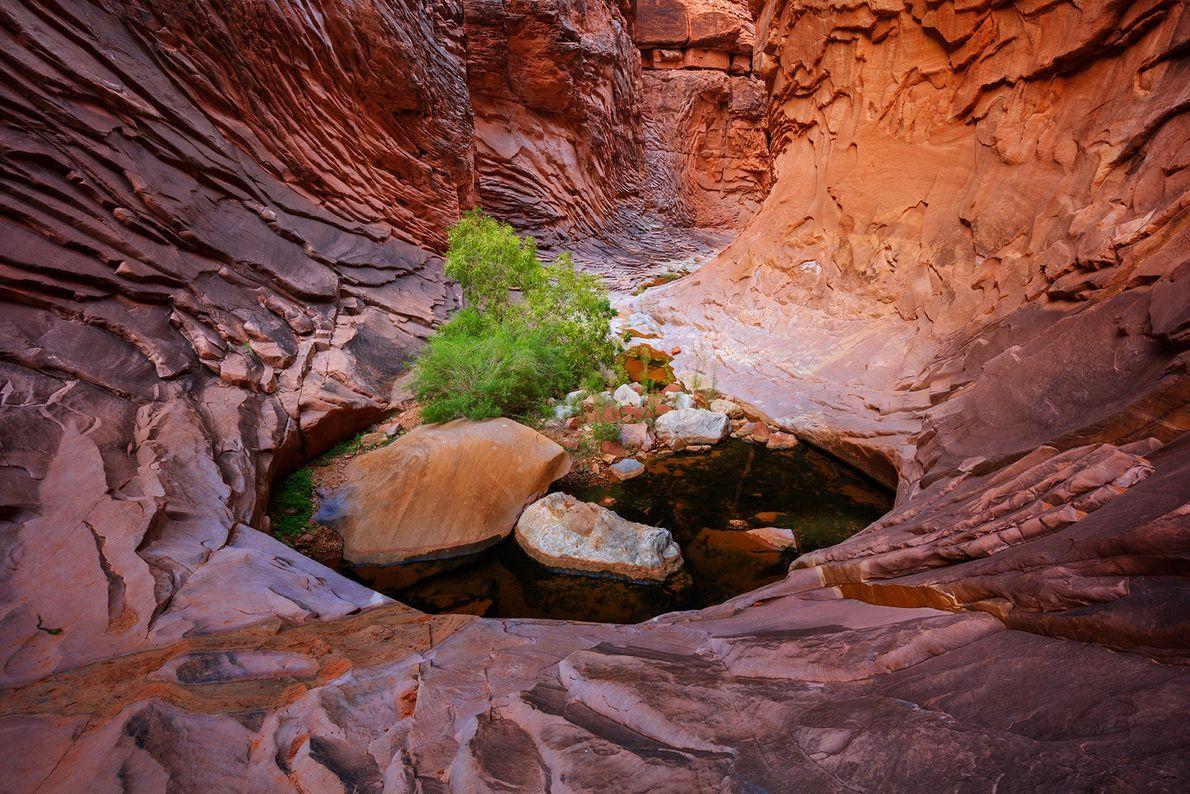 Les pluies de moisson et les fontes de neige du printemps s'écoulent à travers les canyons ...