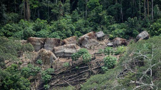 L'étonnante technique des tribus amazoniennes pour fertiliser leur sol