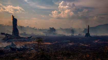 La saison des ouragans pourrait intensifier les feux de forêt en Amazonie