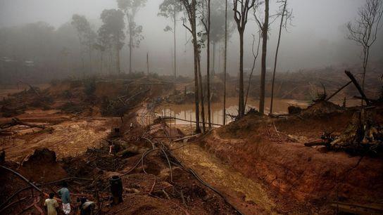 Le Garimpo do Juma est une mine d'or creusée à 25 mètres sous terre sur les ...