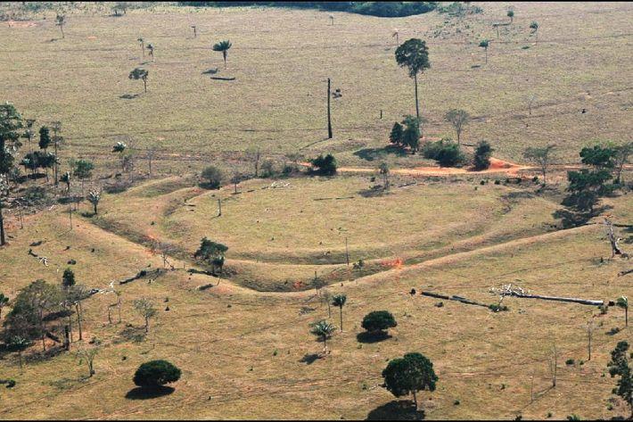 En Amazonie du sud, les géoglyphes témoignent de la présence d'une population prospère.