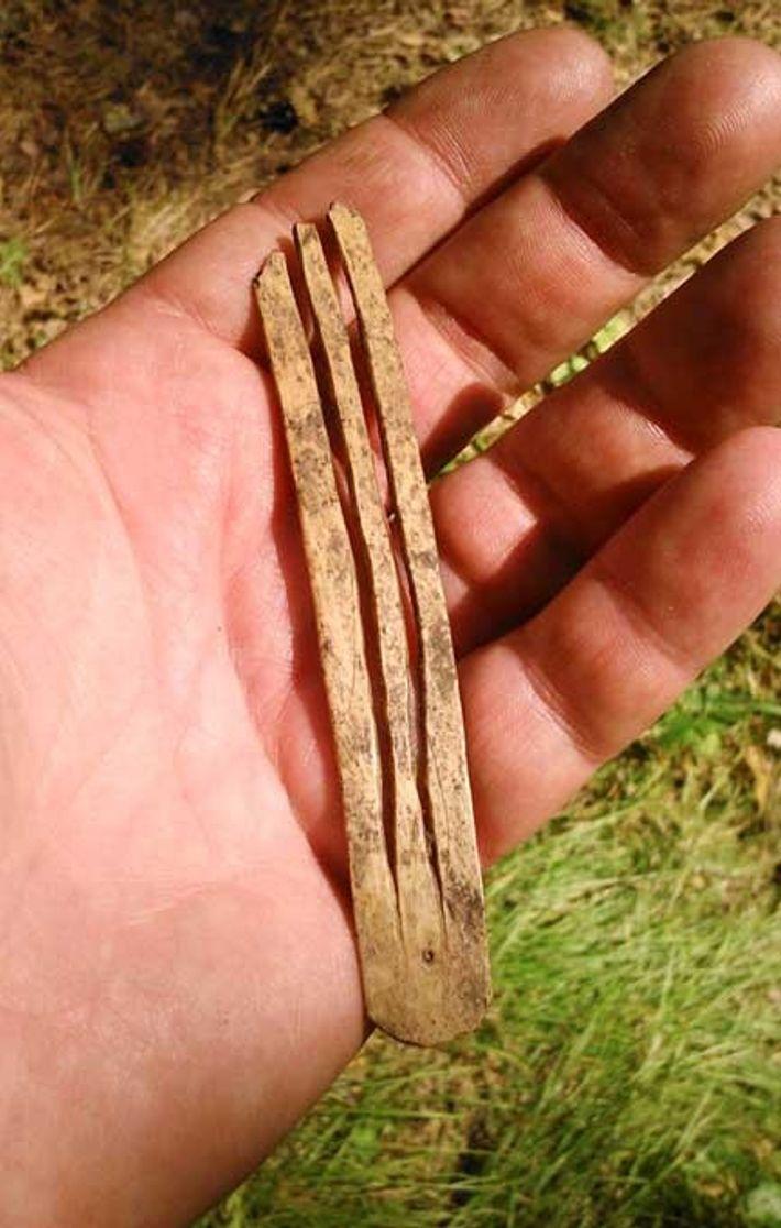 Ancienne guimbarde, découverte en Russie, vieille d'environ 1 700 ans.