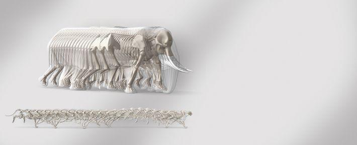 Éléphant d'Afrique (Loxodonta africana) etGuépard (Acinonyx jubatus)