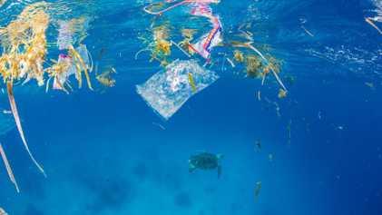 La Méditerranée, mer la plus polluée du monde