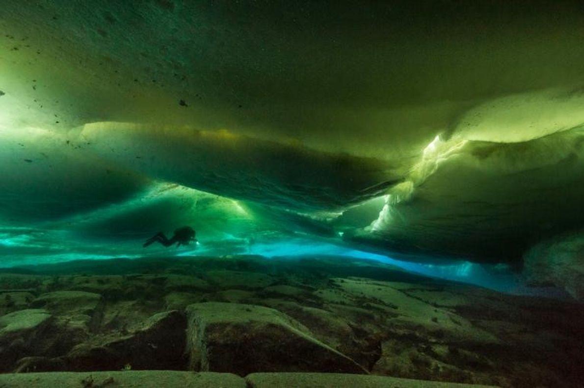 Au cours de plongées d'une durée de cinq heures jusqu'à 70 mètres de profondeur, les plongeurs ...