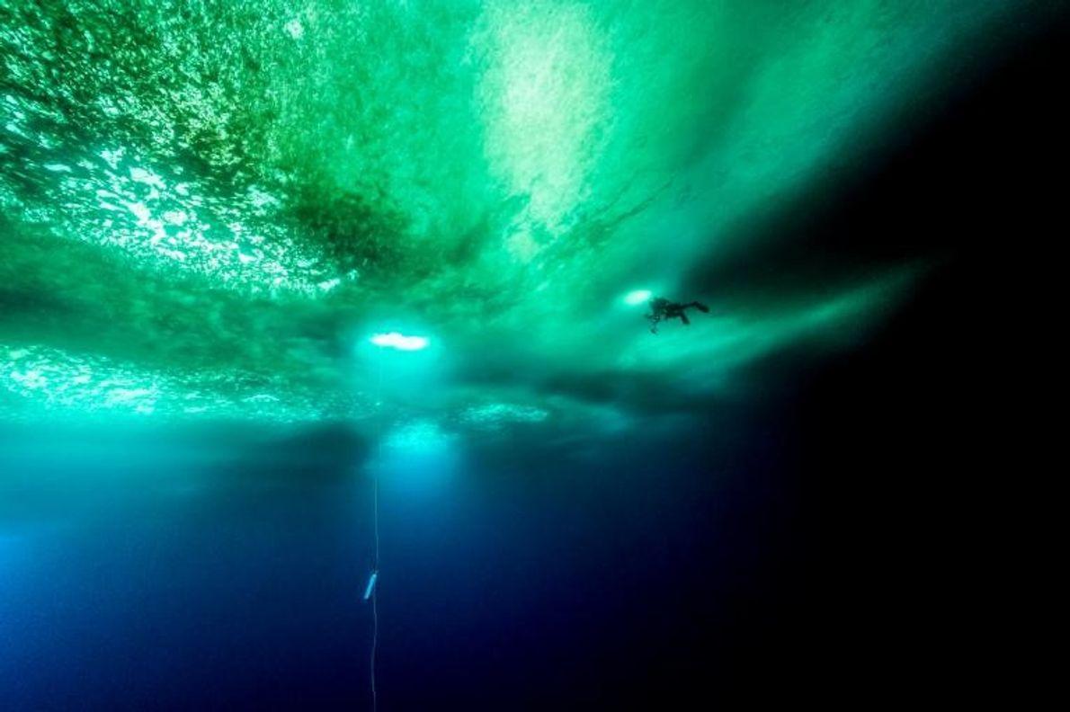 Un plongeur nage à plusieurs mètres de profondeur, sous la glace de l'Antarctique. La corde que ...