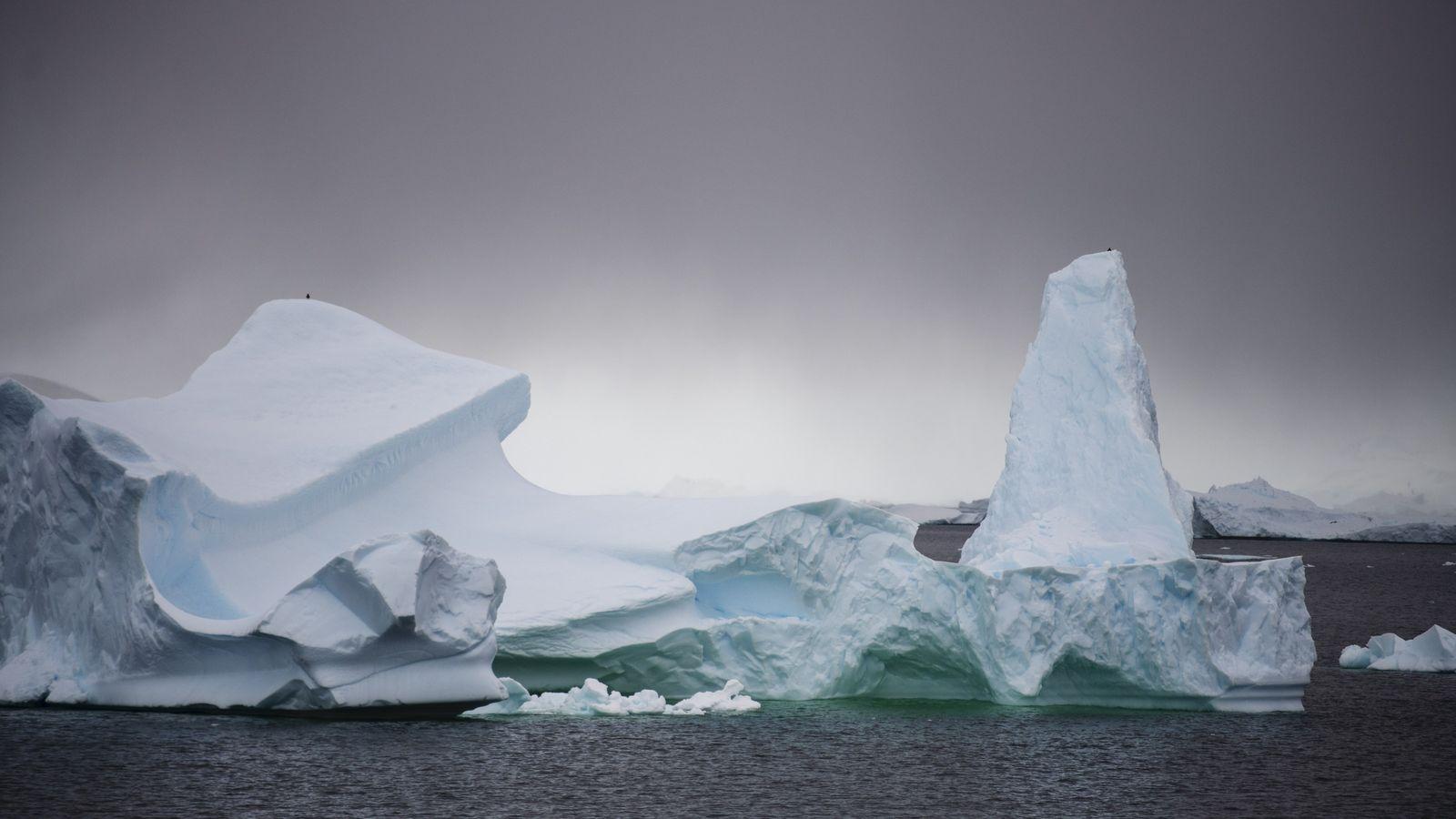 Juste au sud du cercle polaire, une multitude d'icebergs constellent leseaux de Crystal Sound.
