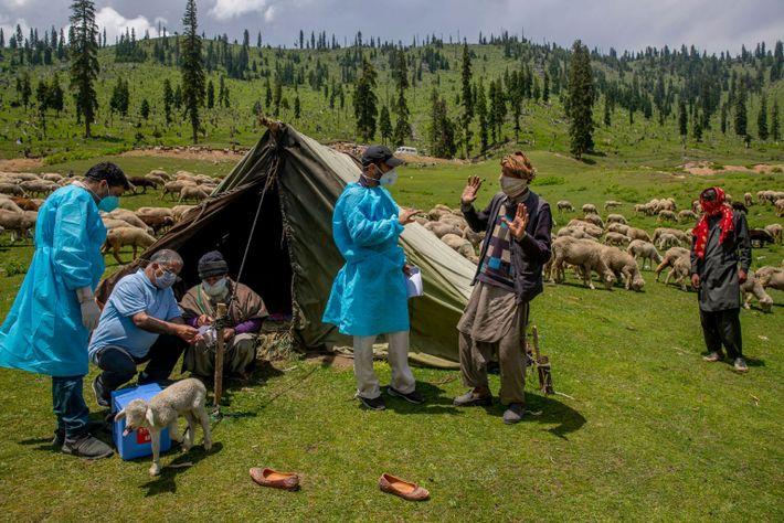 Des soignants discutent avec des nomades du Cachemire lors d'une campagne de vaccination contre la COVID-19 ...