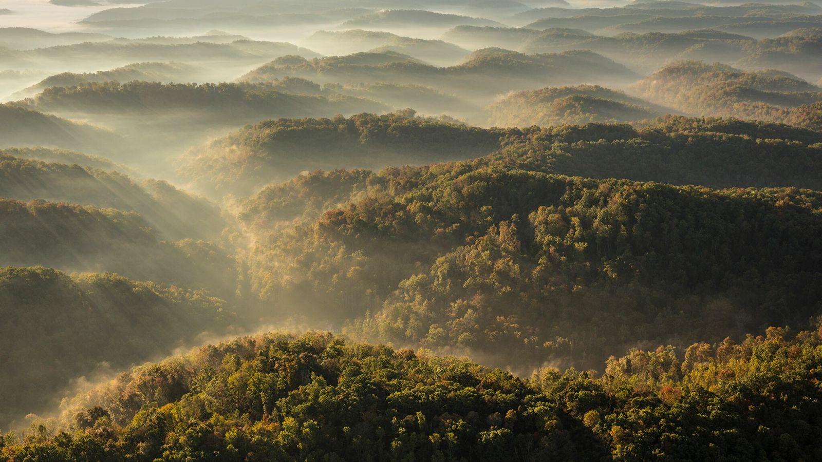 Dans le sud-est des États-Unis, les Appalaches perdent progressivement en altitude à cause de l'érosion et ...
