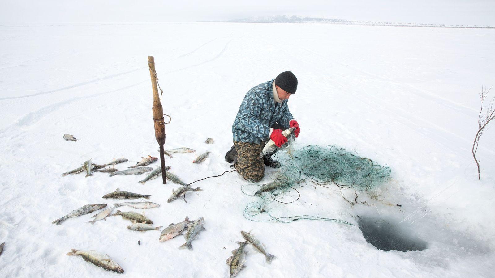 Près de Tastubek, au Kazakhstan, Omirserik Ibragimov, 25 ans, pêche sous la glace à l'aide d'un ...