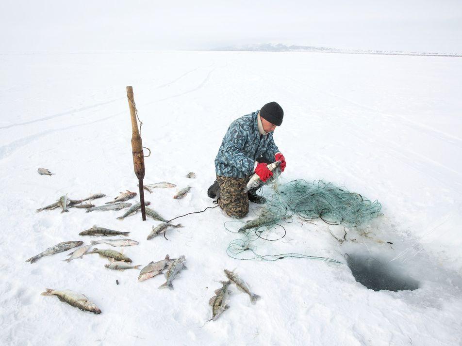 La mer d'Aral que l'on croyait morte est revenue à la vie