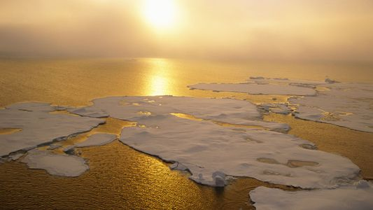 La superficie de la banquise arctique a atteint un minimum historique en octobre 2020