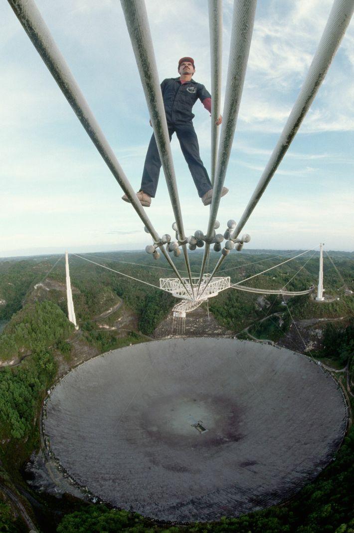 Sur cette photographie prise en 1989 à l'observatoire d'Arecibo, le technicien Luis Heredia inspecte quelques-uns des câbles qui ...