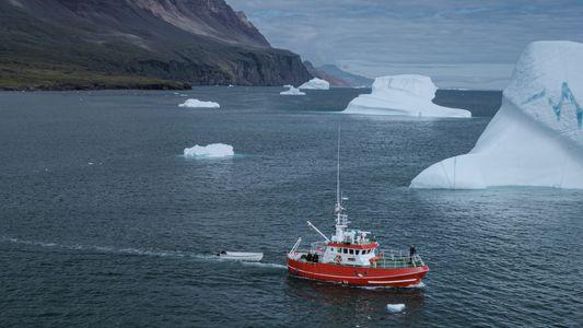 Les mutations microbiennes qui pourraient changer l'arctique à jamais