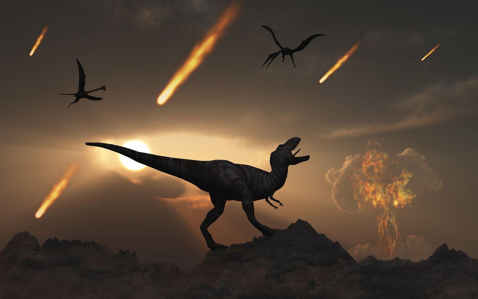 Les volcans auraient favorisé le rétablissement des espèces après l'extinction des dinosaures