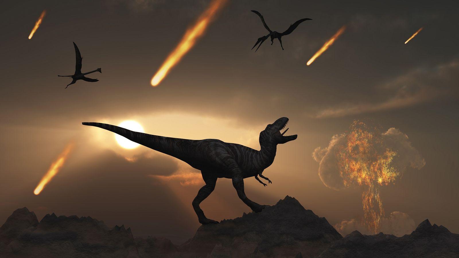 À la fin du Crétacé, il y a 66 millions d'années, la chute d'un astéroïde géant ...