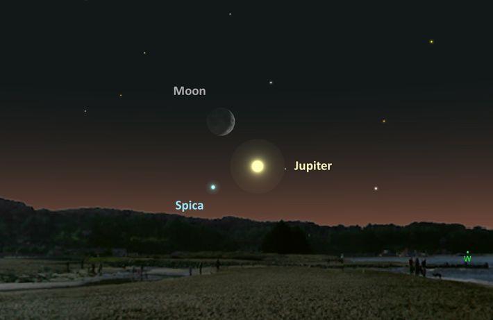 Le 25 août, l'étoile bleue Spica, Jupiter et la Lune formeront un trio cosmique.