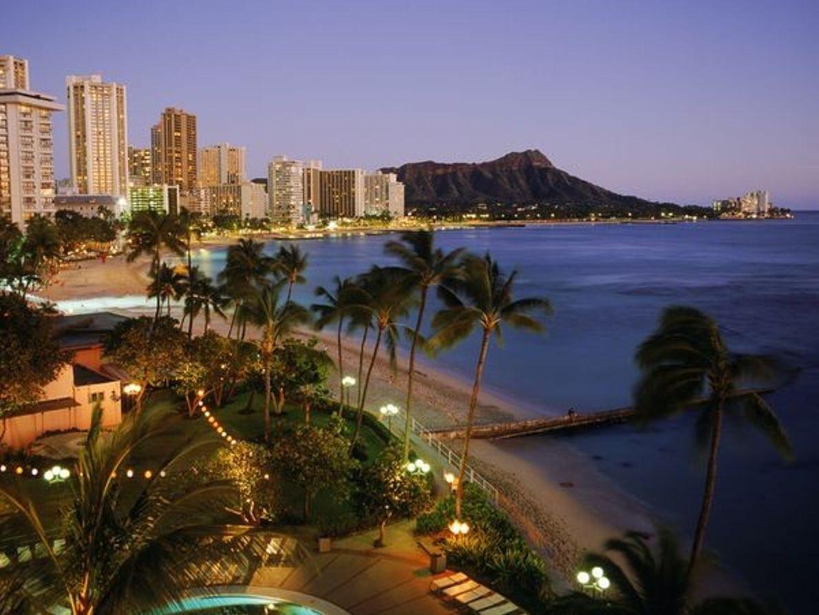 Photo : Plage et palmiers de nuit