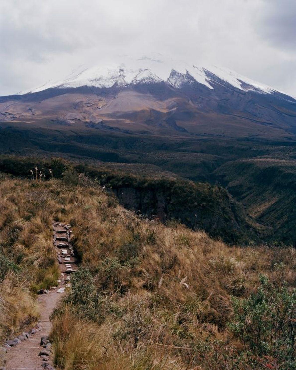 Vos papilles ne seront pas les seuls à contribution lors du tour « Andean Flavors » ...