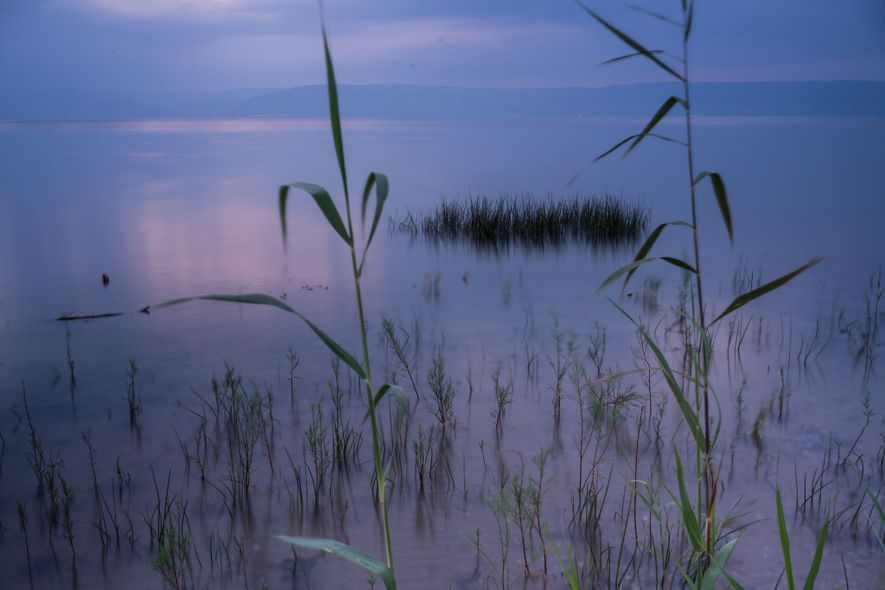 """""""Suivez-moi, et je vous ferai pêcheurs d'hommes"""", a déclaré Jésus à ses premiers disciples, des pêcheurs ..."""