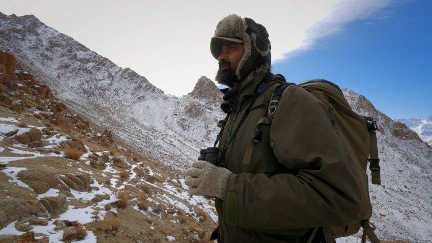 Sur les traces d'une panthère des neiges dans le Ladakh.