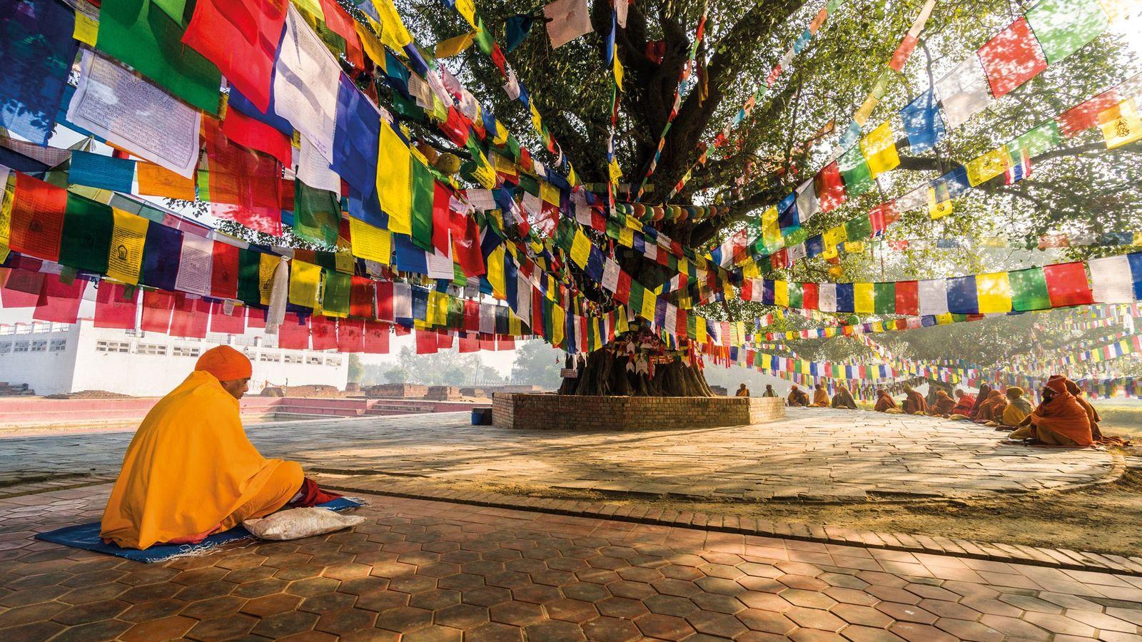 Un sage bouddhiste, ou sadhu, est assis sous un arbre de la bodhi à Lumbini, site ...