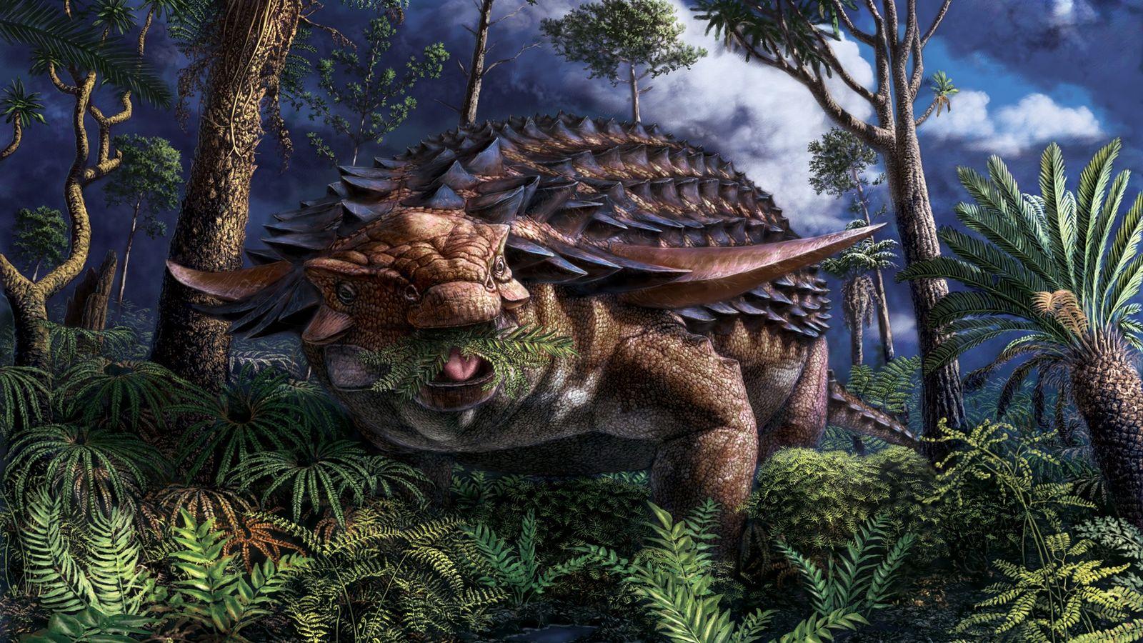 Il y a 110 millions d'années, dans l'actuel nord-ouest de l'Alberta, le nodosaure Borealopelta markmitchelli se nourrissait ...