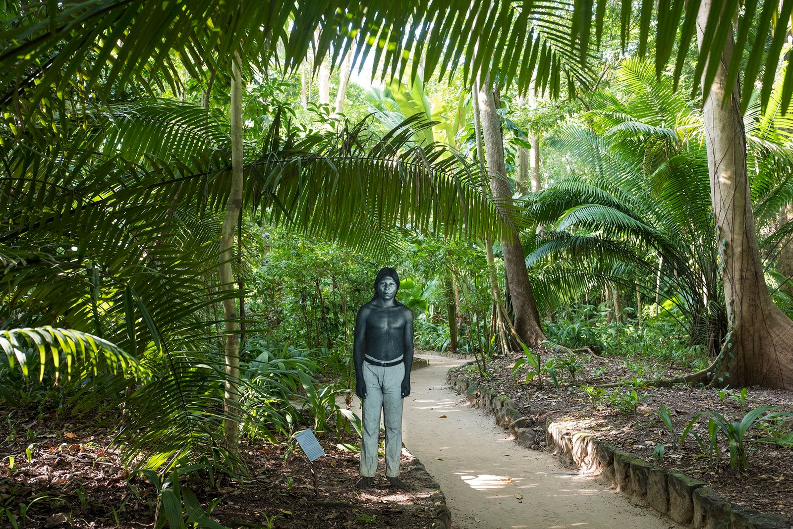 Brésil : le coronavirus fait des ravages au sein des tribus amazoniennes