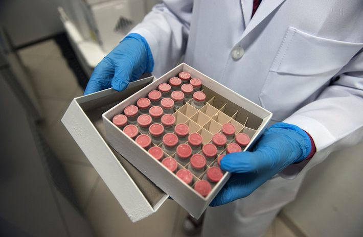 Cette boîte contient des doses de ChAdOx1, le candidat-vaccin de l'université d'Oxford, photographié au D'Or Institute ...