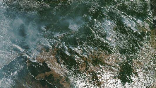 L'Amazonie se consume sous nos yeux et la déforestation en est la principale cause