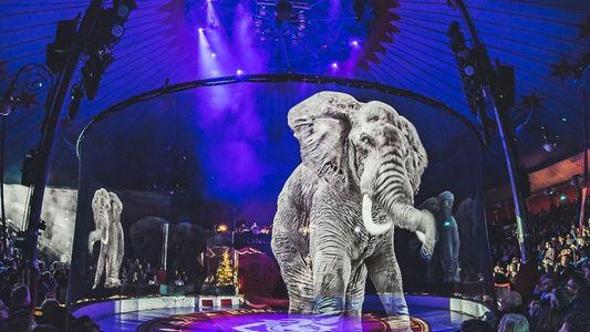En Allemagne, les animaux du cirque sont remplacés par des hologrammes