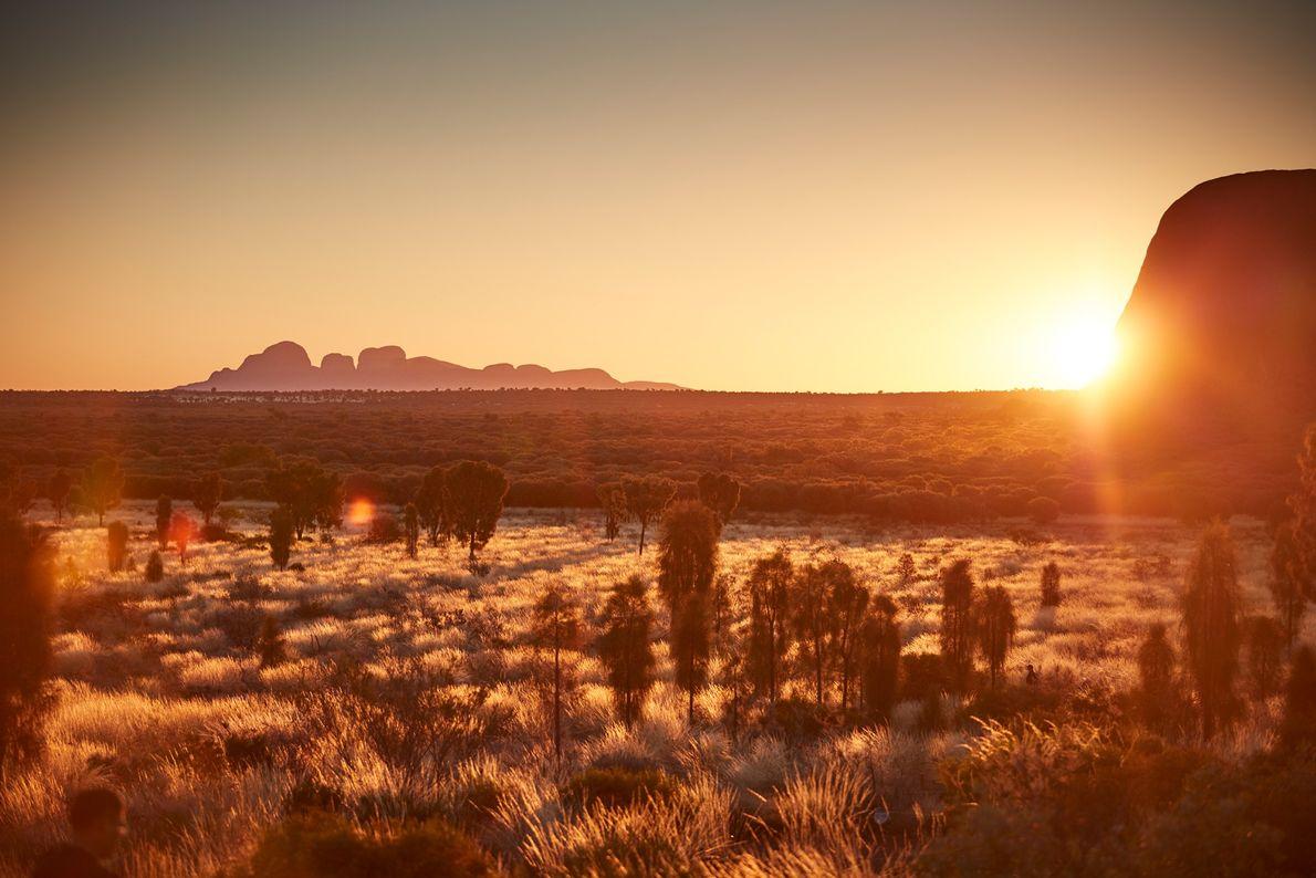 Bien que Uluru et Kata Tjuta représentent les intérêts principaux du parc, les photographes doivent également ...