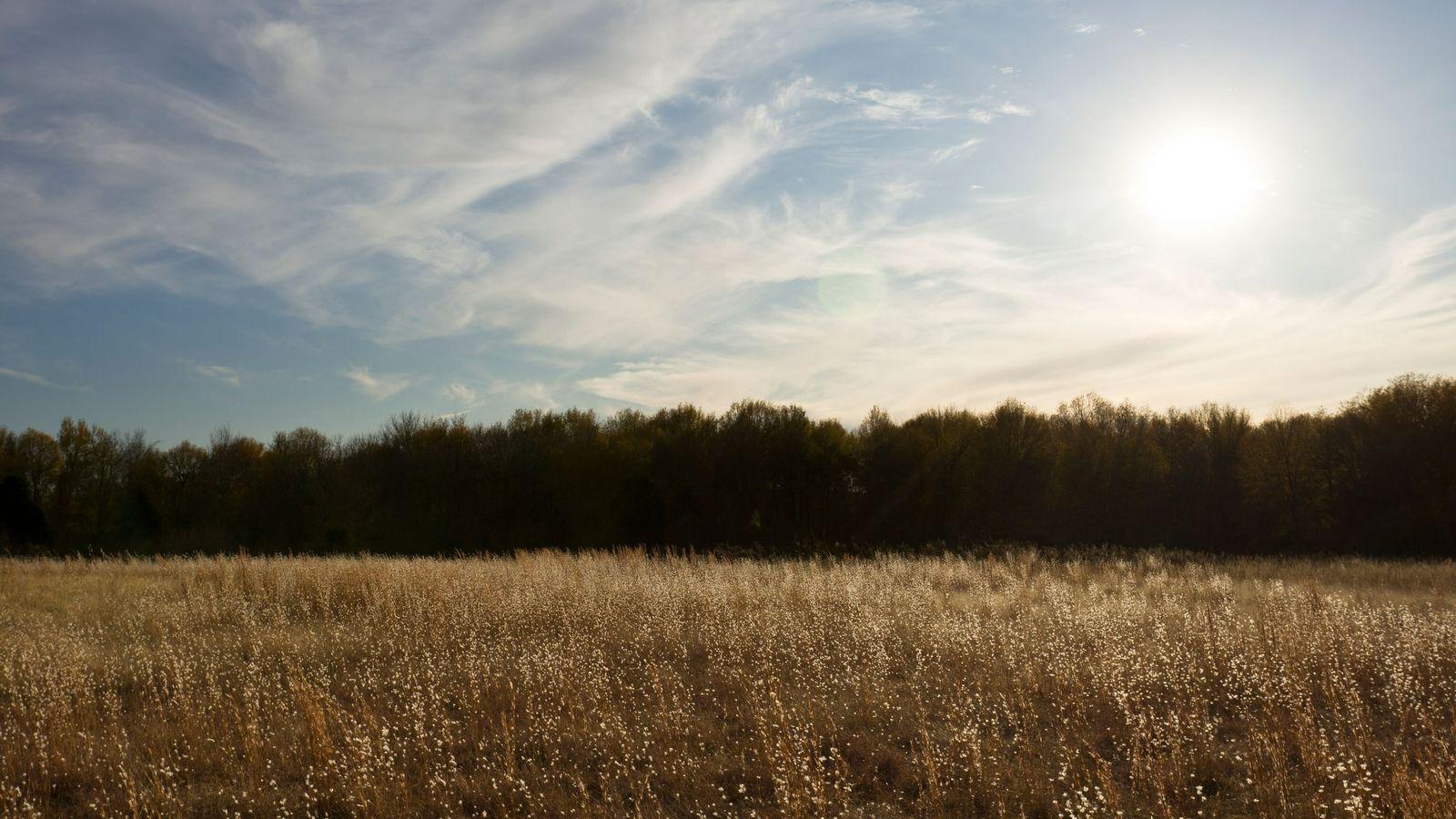 Lors de sa découverte en 1935, Spiro Mounds, situé en Oklahoma, a été surnommé « la tombe ...