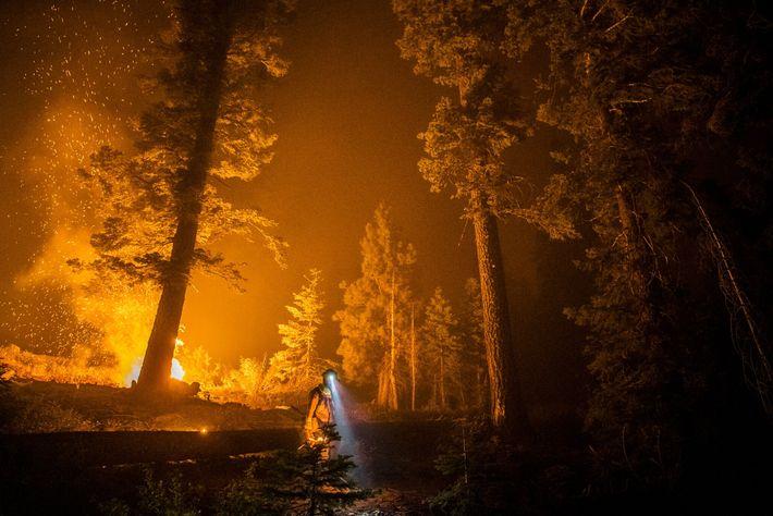 La Californie a enregistré cette année sa pire saison de feux de forêt. Un pompier se ...