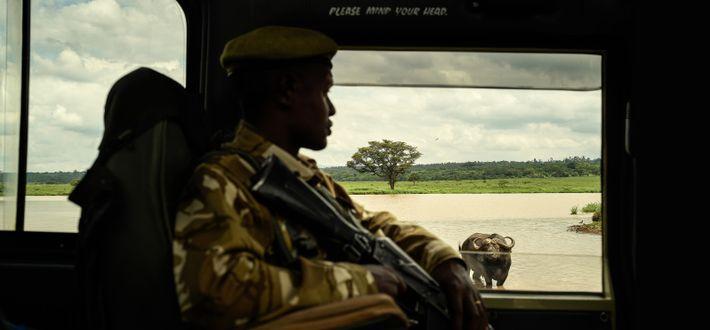 Tête à tête, Parc national de Nairobi, Kenya, 2019 - Créé en 1946 et recouvrant une ...