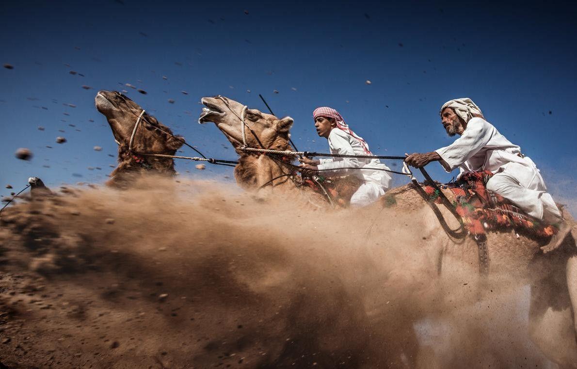 Une course traditionnelle de chameaux à Oman. Le but principal de l'Ardah est de montrer la ...