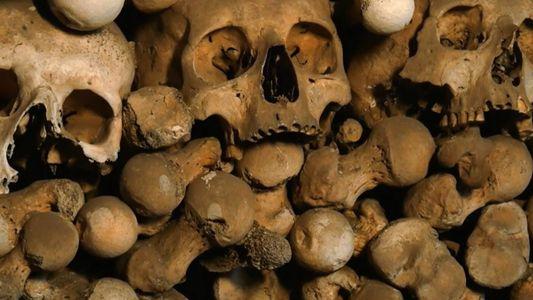 Le culte du crâne des chasseurs-cueilleurs