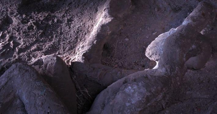Pourquoi les victimes de l'éruption du Vésuve avaient une position similaire ?