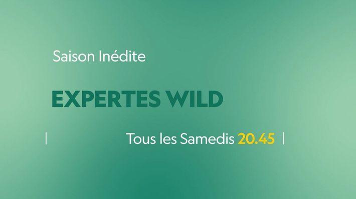Expertes Wild | Bande annonce