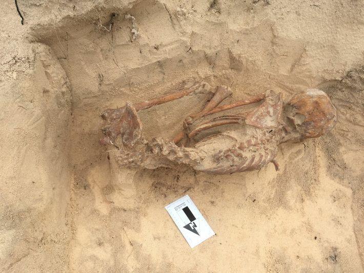L'étude de Harvard s'appuie sur l'ADN prélevé sur les squelettes de 174 individus, notamment cette femme lucayenne ...