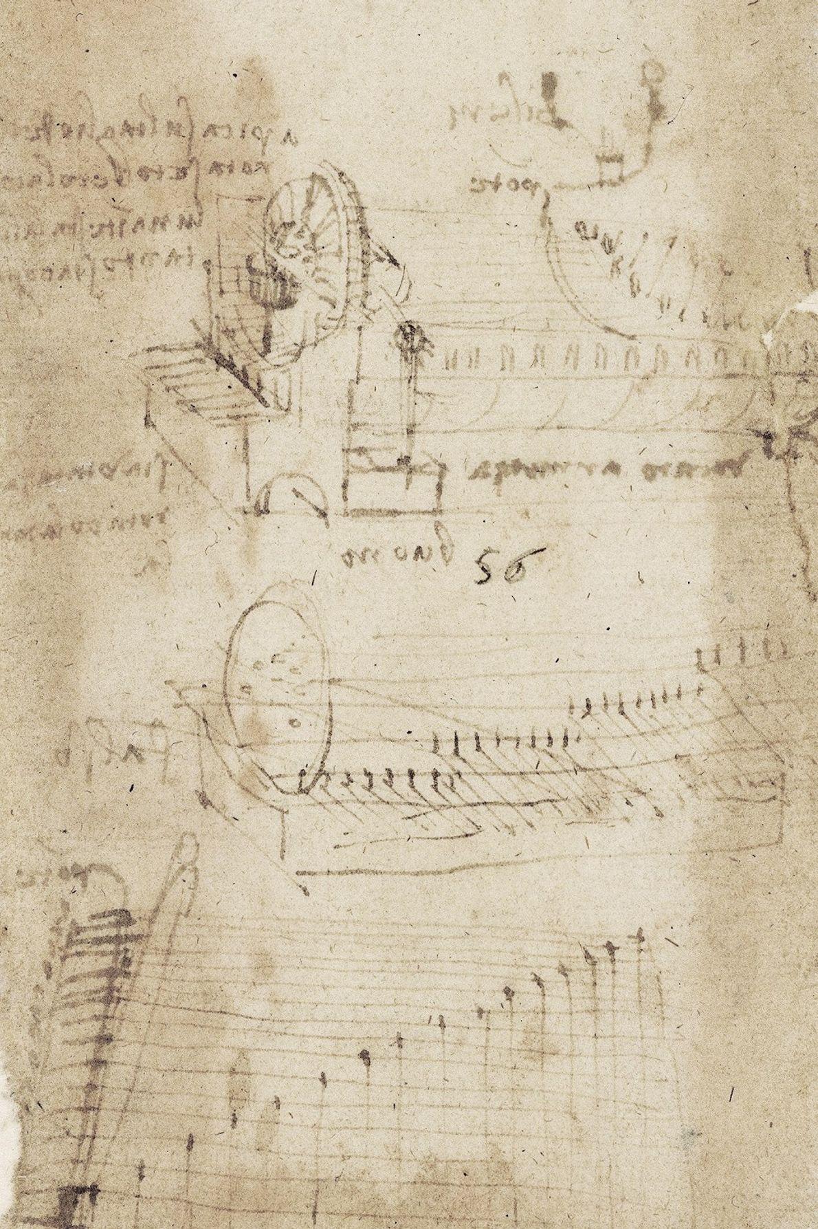 Musicien de talent, Léonard a étudié l'acoustique, chanté et improvisé des mélodies sur sa lire da ...