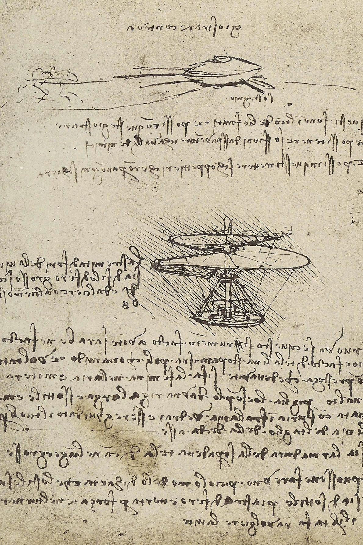 La vis aérienne dessinée par la plume emblématique de Léonard, faite de fil métallique, de canne ...