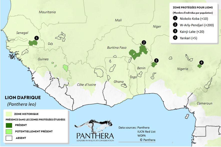 Carte de répartition de la population des lions d'Afrique en Afrique de l'Ouest.