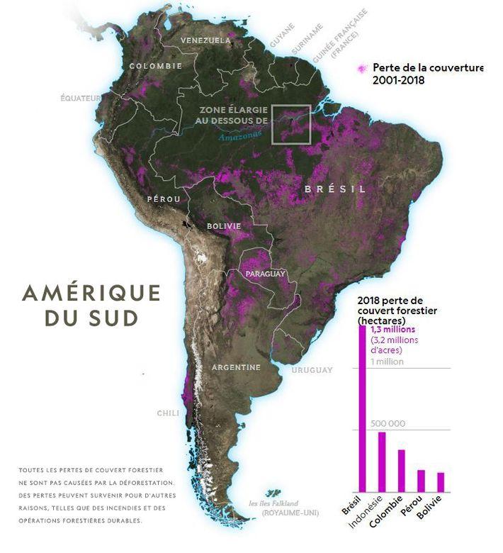 Cette carte illustre la perte de couvert forestier pour la période 2001-2018.