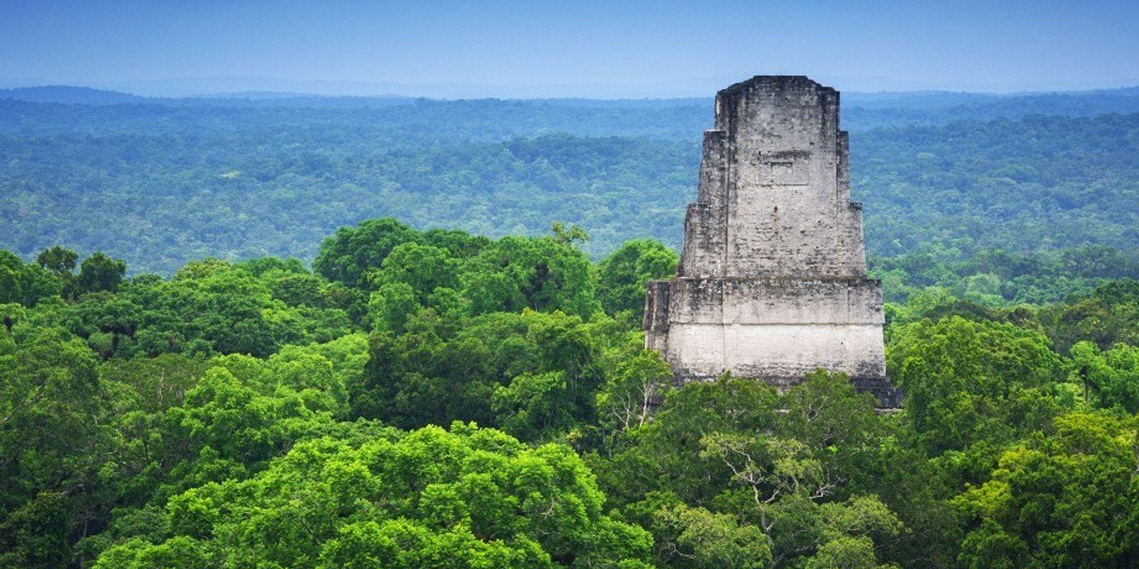 Guatemala : découverte de 60 000 vestiges mayas
