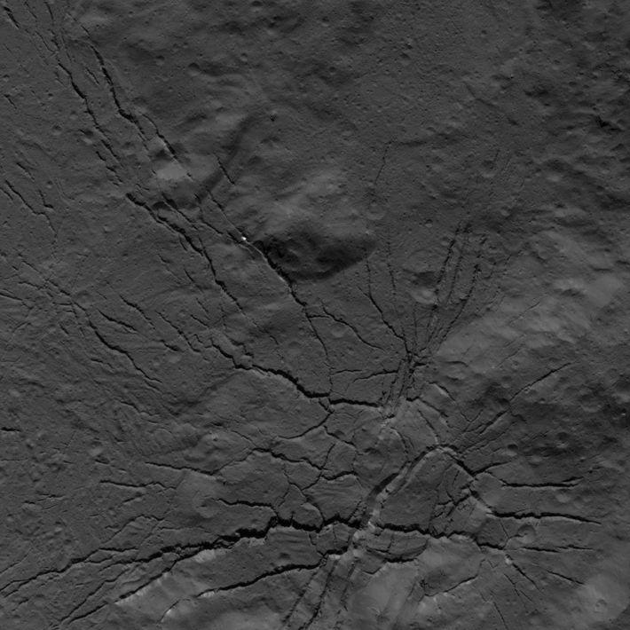 La sonde Dawn de la NASA a capturé un réseau de fractures au fond du cratère ...